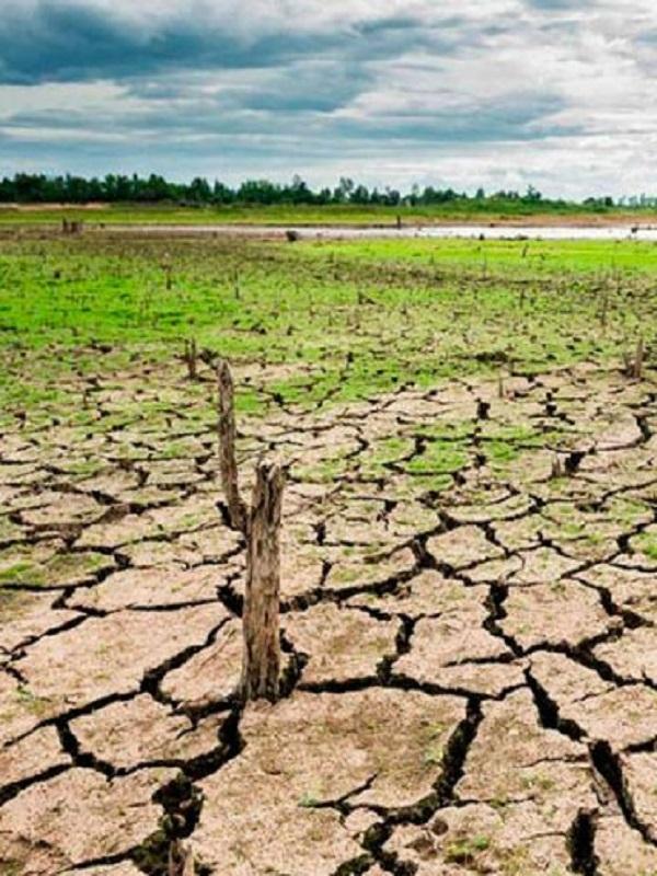 Extremadura 'clama' contra el silencio sobre el cambio climático en los dos debates electorales