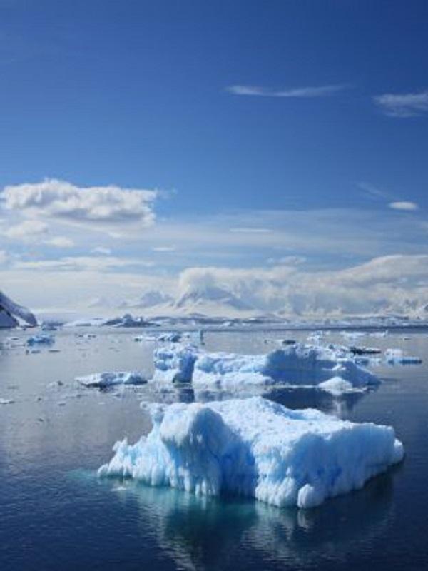 Los microbios bombean más CO2 al aire por el calentamiento de los océanos