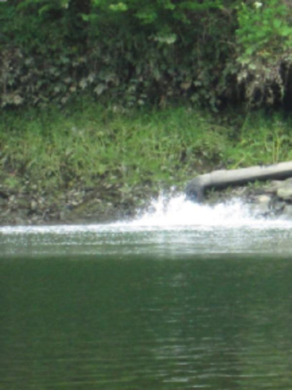 Asturias. El disparatado proyecto de volver a verter residuos lacteos a la ría de Navia