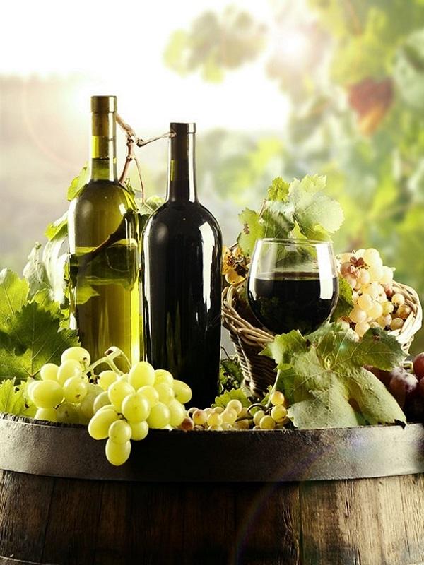 Vinos Ecológicos en BioCultura Barcelona 2019