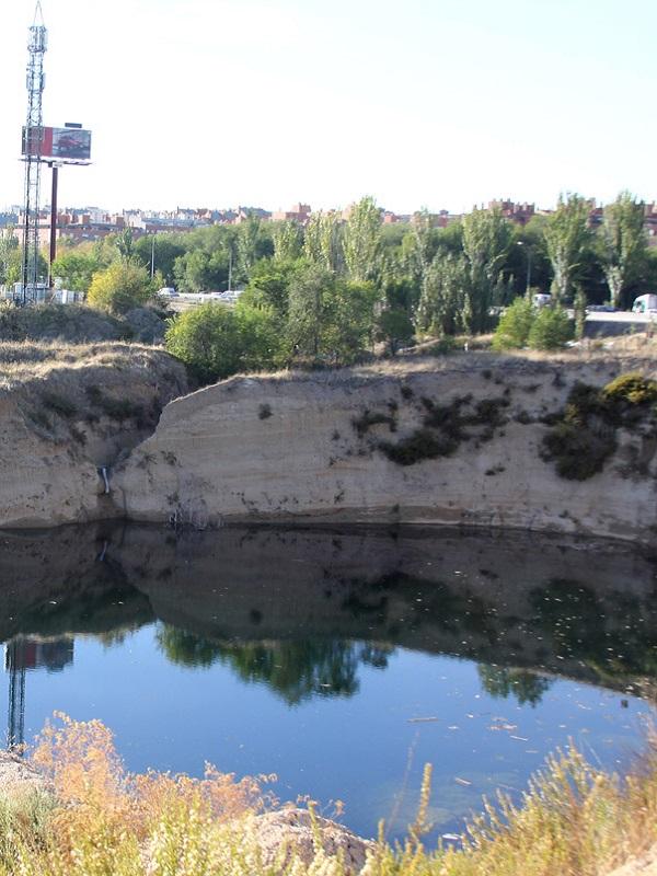 La protección de la laguna de la Quinta en Baena es inaplazable