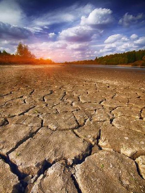 La Xunta de Galicia planta cara al cambio climático