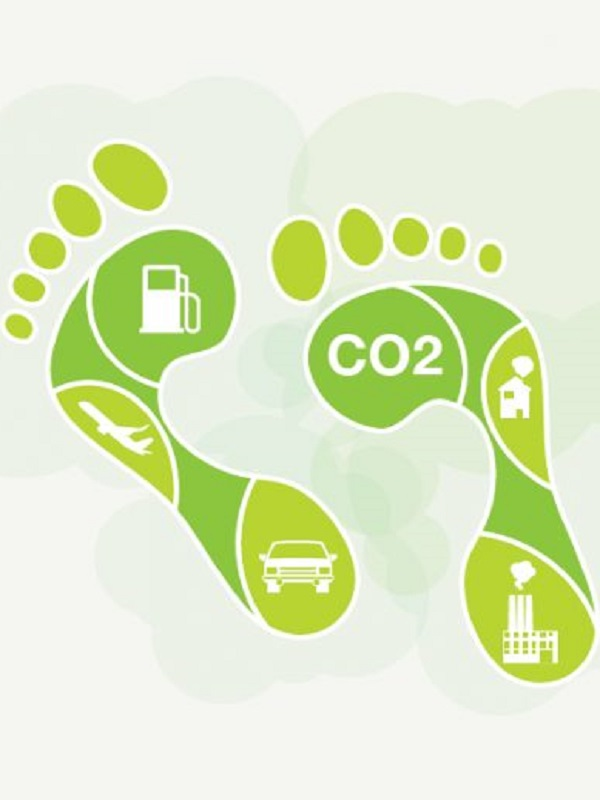Por un papel proactivo de la ciudadanía para reducir la huella de carbono