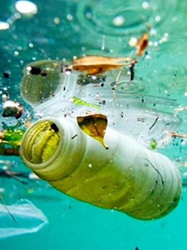 Antes de lo que pensamos habrá en los océanos más plástico que peces
