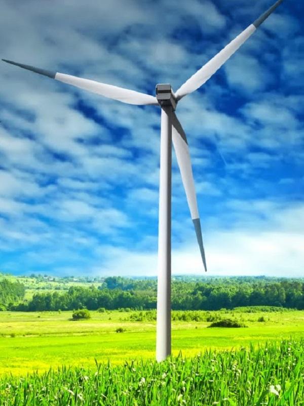 La energía eólica se 'salió' en enero