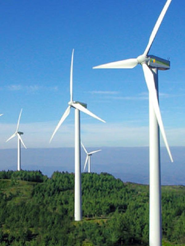 El pasado domingo la energía eólica en España arraso a nivel europeo