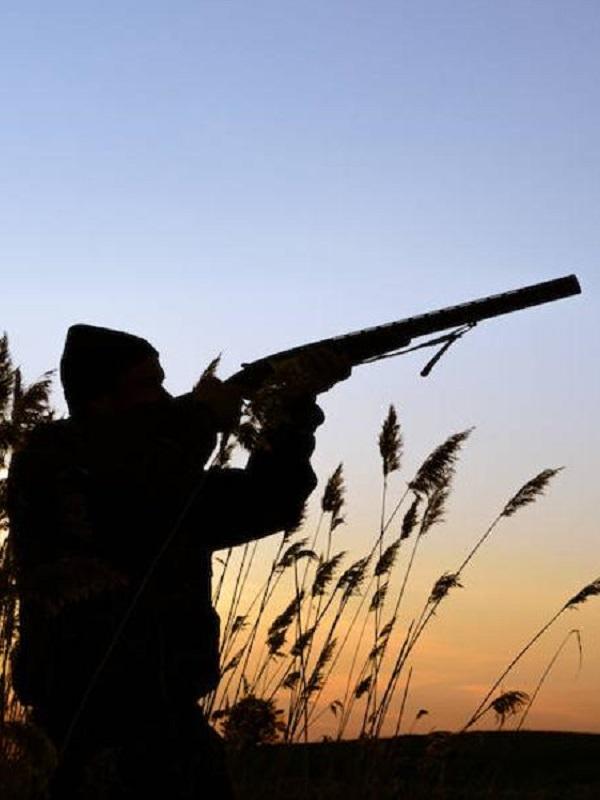Alarma, enseñanza de la caza en los centros educativos extremeños