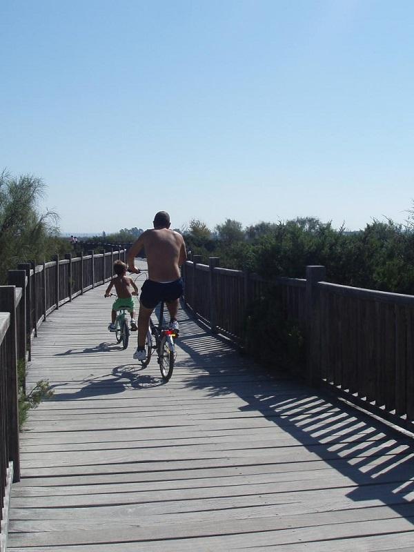 Cádiz construirá vías ciclistas en el parque de Los Toruños y Pinar de la Algaida