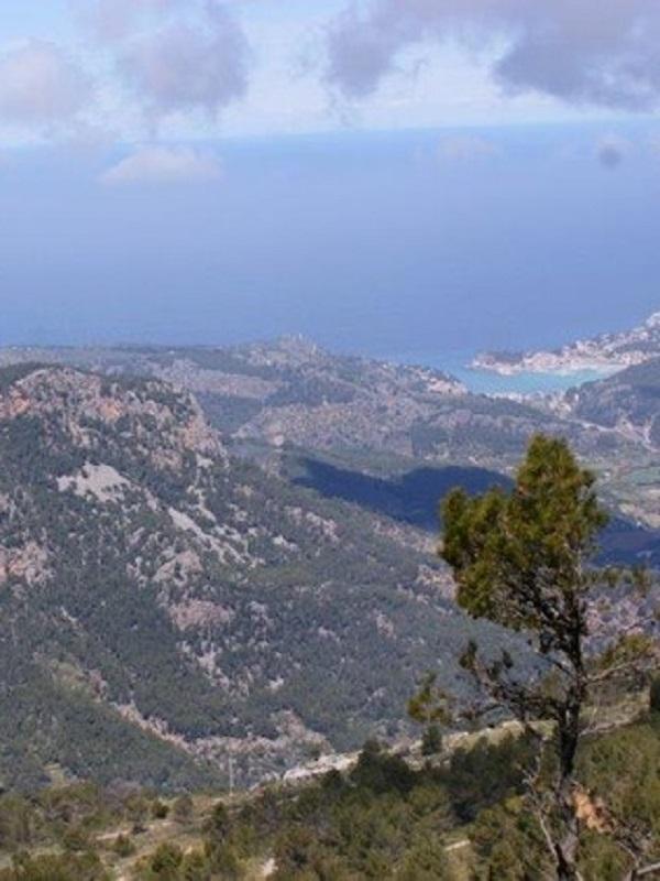 Alerta, construcción de un chalet en lo alto de la Serra d'Alfàbia