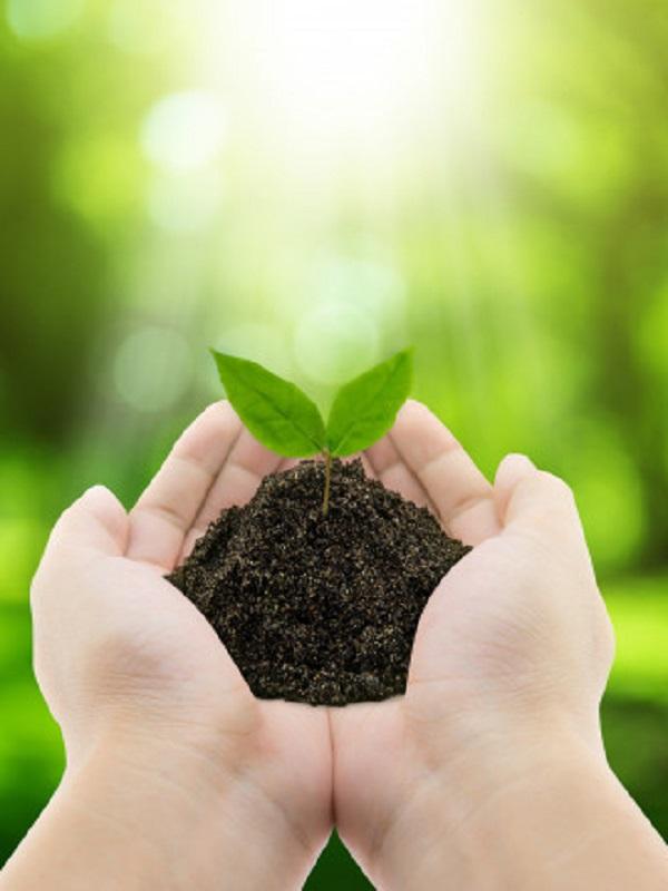 10º Congreso Mundial de Educación Ambiental