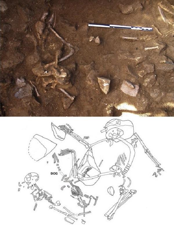 El entierro de perros fue un ritual funerario habitual de las poblaciones neolíticas del nordeste de la península Ibérica hace unos 6.000 años