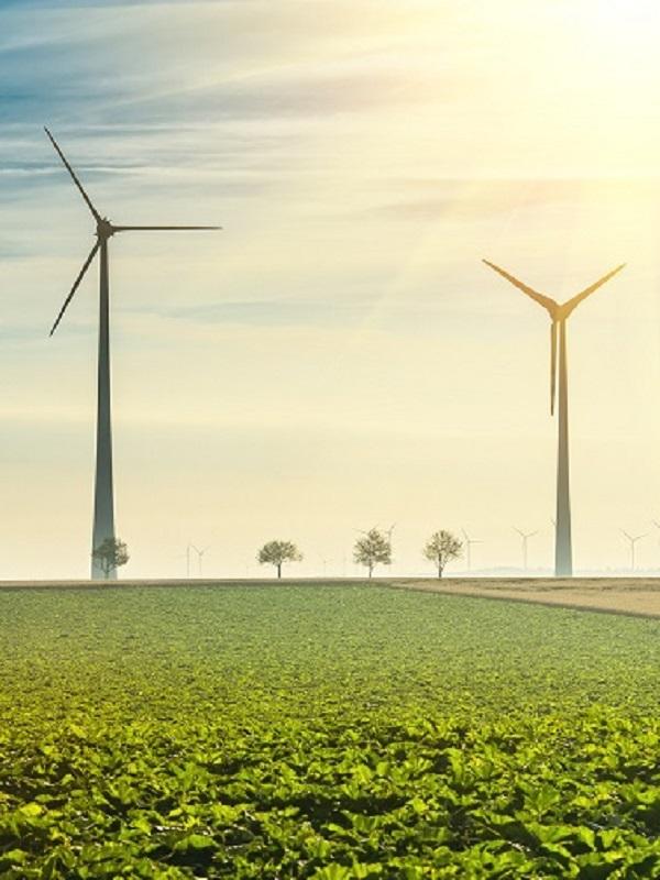 Iberdrola mejora su producción impulsada por la aportación de las energías renovables