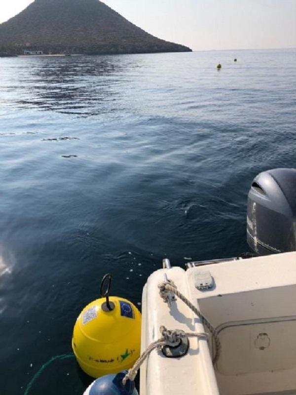 Unos 1.500 barcos usarán cada verano los 30 fondeos ecológicos de la Isla Grosa
