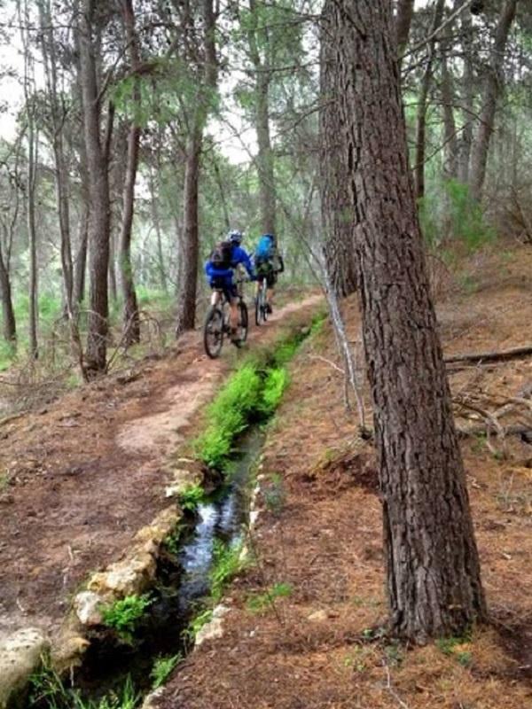 Murcia busca modelos de turismo sostenible y que mejoren la conservación del territorio