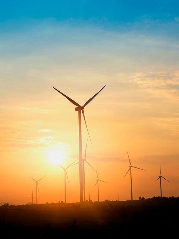 Webinar: Cómo cuantificar los daños reclamables judicialmente en los swaps de empresas de energías renovables.