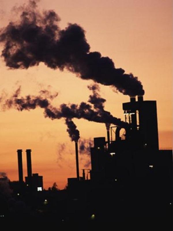 Unilever registra el menor impacto ecológico entre las empresas con más consumo de CO2 del mundo