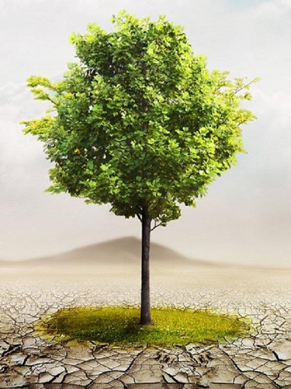 Equo reprocha al Gobierno su tardanza con la ley de cambio climático