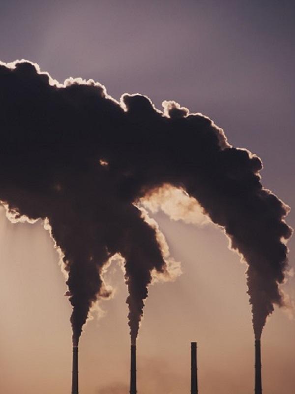 Lluvia de millones para entidades locales que promuevan una economía baja en carbono