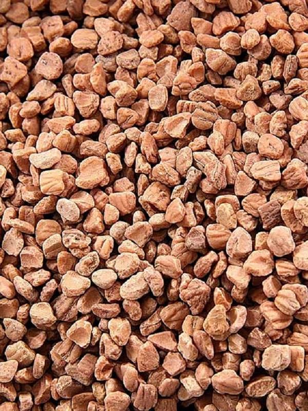 Proyecto Biomasstep, en el que participa Diputación de Sevilla, evaluará la calidad de biomasa de los huesos de aceituna