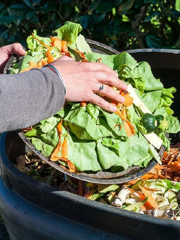 Guía de alimentación: planificar y reutilizar todo es empezar