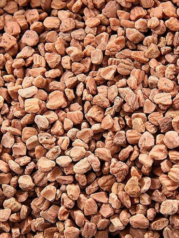 Proyecto Biomasstep, evaluará la calidad de biomasa de los huesos de aceituna