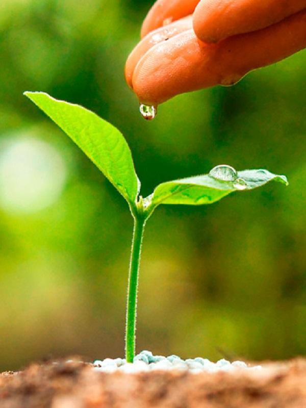 Unicaja Banco adapta su certificado de gestión ambiental a la nueva norma ISO 14001