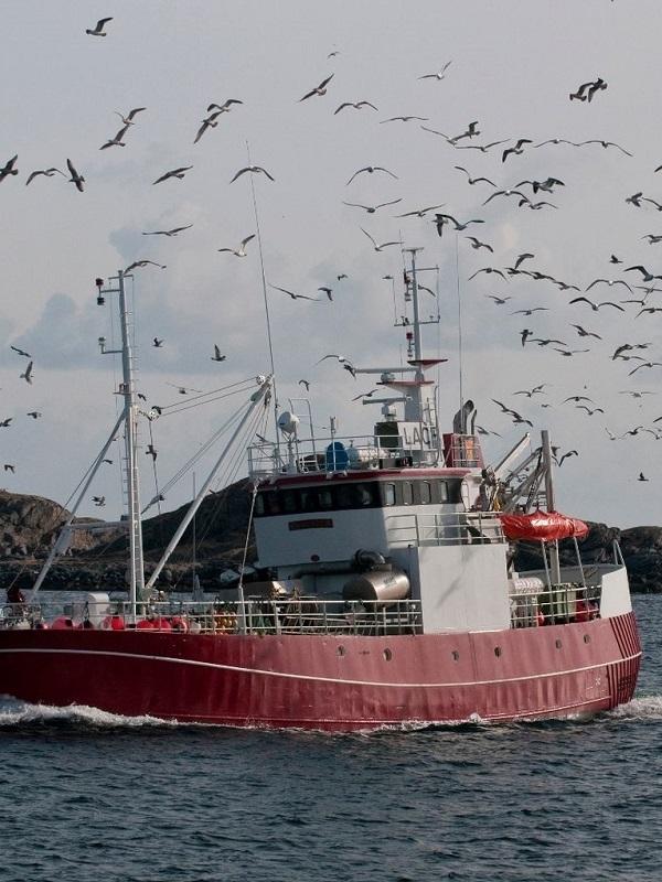 Los pescadores de Huelva cartografían los volcanes de fango del Golfo de Cádiz para reducir el impacto de la pesca