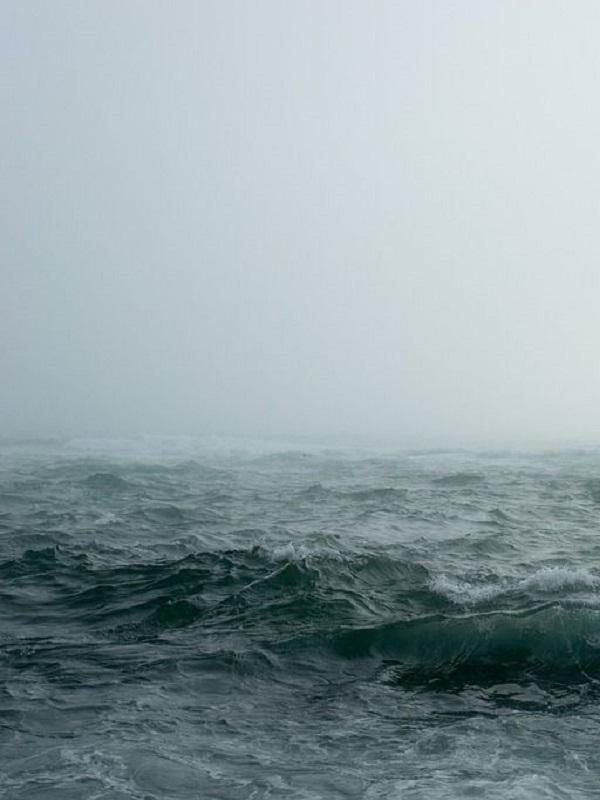 Tres pioneros en detectar el aumento del nivel del mar por cambio climático, premios BBVA fronteras del conocimiento