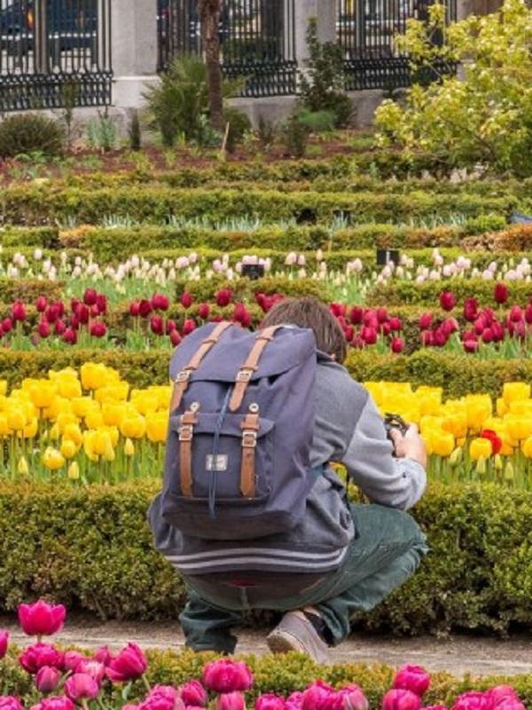 El Real Jardín Botánico recibió 400.000 visitantes en 2018