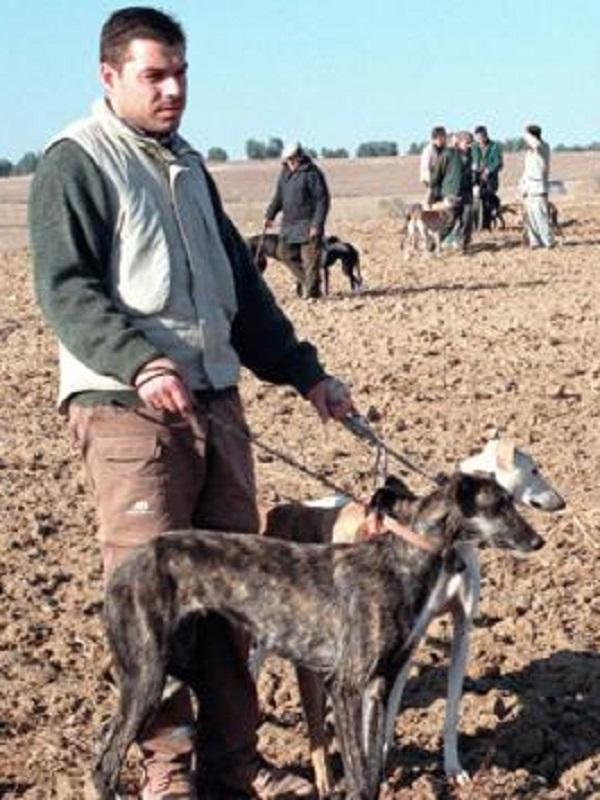 Aberrantes propuestas de PP a la ley de caza de Castilla y La Mancha