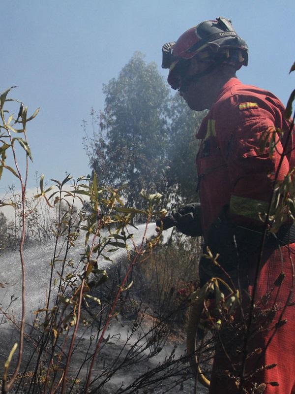 Comienzan los trabajos de restauración en el monte público 'Jarrama' afectado por el incendio de La Granada