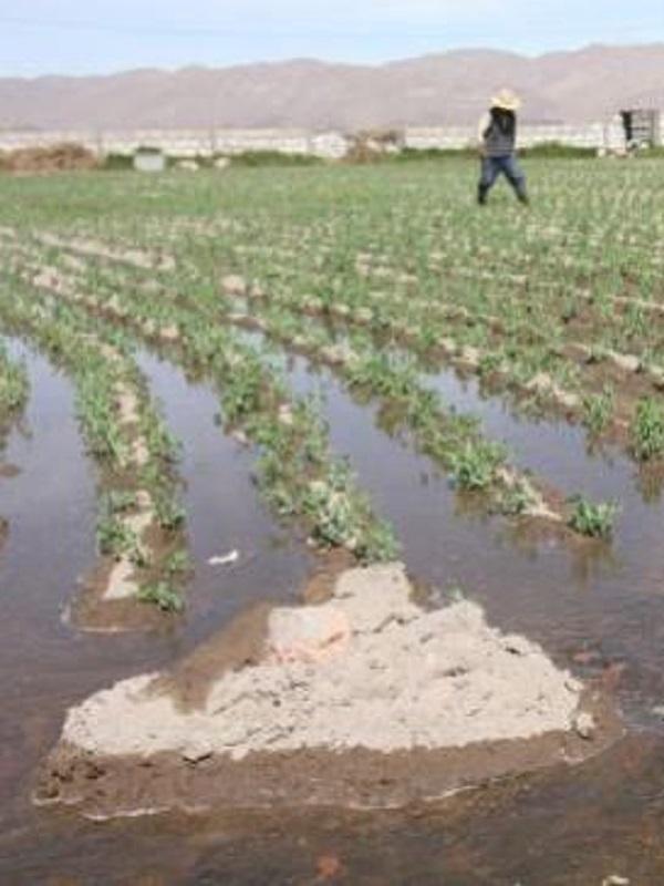 Regantes defienden un plan nacional de infraestructuras hídricas para afrontar el cambio climático