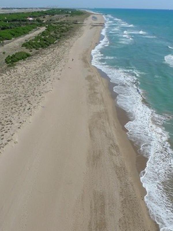El AMB elabora un plan para mejorar la biodiversidad en parques y playas metropolitanas