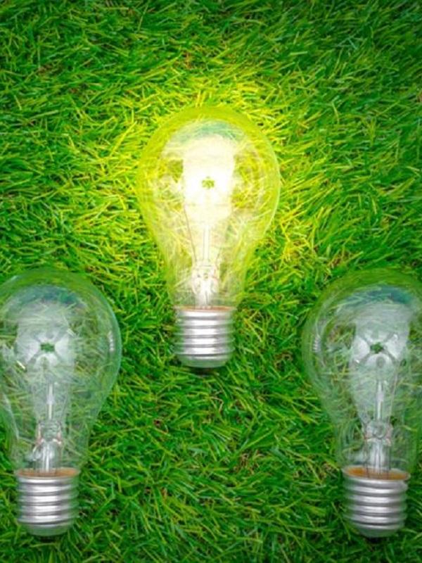 Gana Energía,  ha sido seleccionada para entrar en el programa Lanzadera de Juan Roig