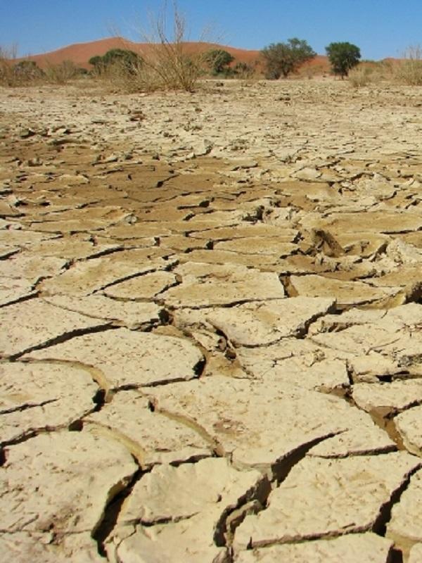 Inminente aprobación de la Ley de Cambio Climático