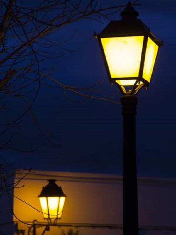 Apagar farolas de madrugada beneficia a los polinizadores nocturnos