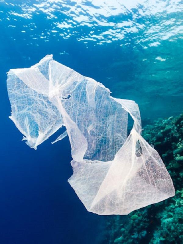 La campaña en Baleares 'Por un mar sin plástico' recupera cerca de 4.000 envases