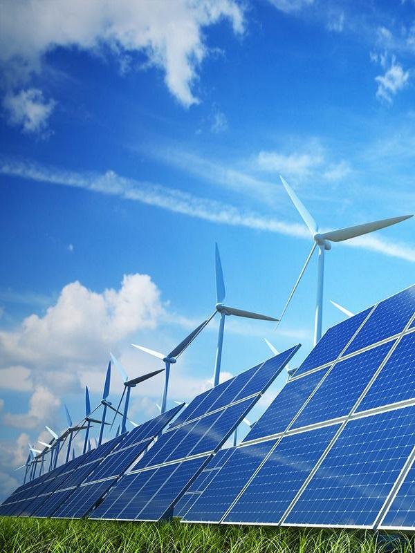 SEO/BirdLife pide responsabilidad ante el 'boom' de renovables que se avecina para que no perjudique a la biodiversidad