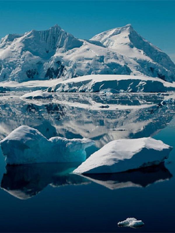 Un lago bajo el hielo antártico revela restos animales de otro tiempo