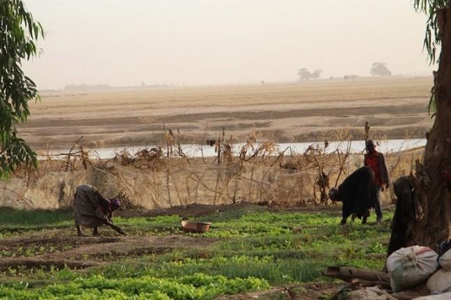 Cambio climático y violencia, un coctel molotov para el Sahel
