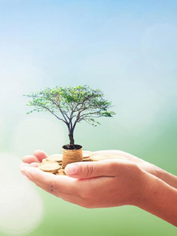 CECA se suma a los Principios de Banca Responsable