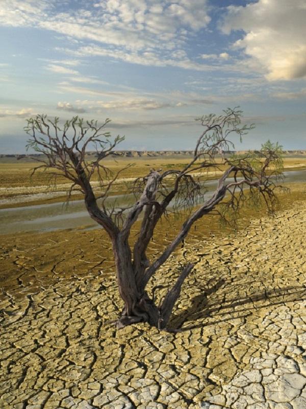 ¿Y si llegamos tarde para frenar el cambio climático?