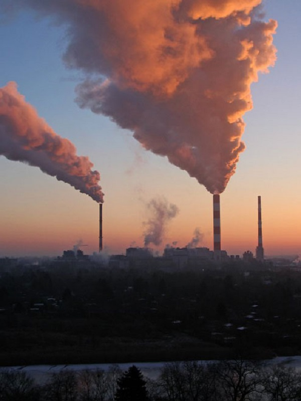 El CO2 crecerá más en 2019 debido a sumideros naturales debilitados