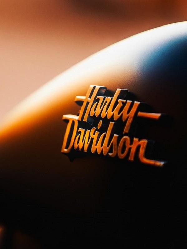 Harley-Davidson presenta dos conceptos eléctricos que no requieren licencia para conducirlos