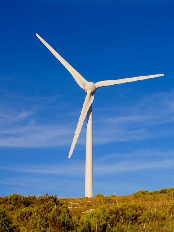 Acciona apoyara sin fisuras los planes de inversión en energías renovables en España