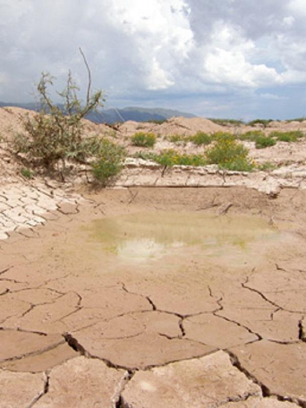 Lo más importante del cambio climático es saber cómo va a afectar y cómo se puede reaccionar