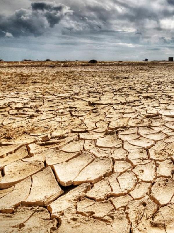 Cambio climático: 'Estamos luchando a contrarreloj'