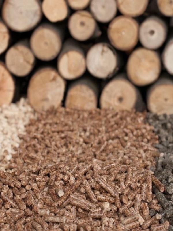 Las estufas y calderas de biomasa mitigan el cambio climático