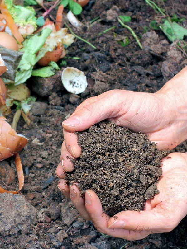 La enorme importancia del compostaje en Galicia
