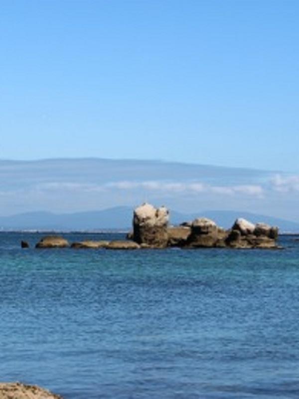 El Gobierno aprueba los objetivos ambientales del segundo ciclo de las estrategias marinas españolas